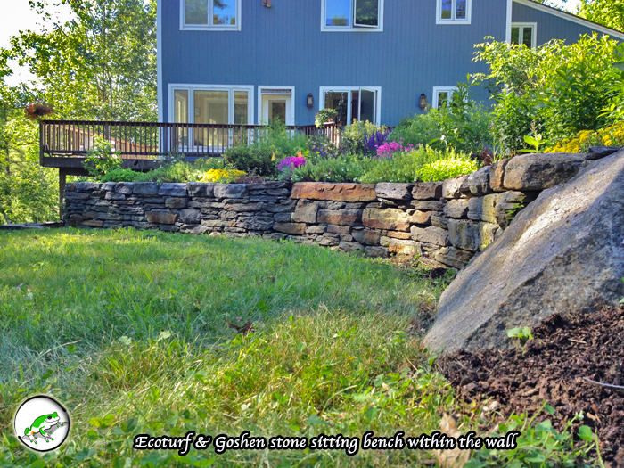 Eco-turf & Organic Lawns | Treefrog Landscapes